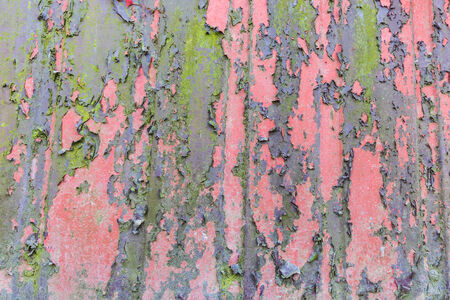 Weathered paint peeling from the background photo