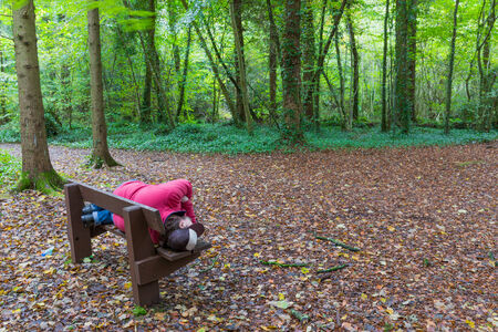 slacker: Man lying on a bench in a forest in autumn
