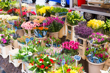 gaff: ZWOLLE, THE NETHERLANDS - FEBRUARY 1, 2014: Flowers on display at the street market in Zwolle