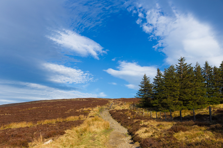 Wicklow Way trail through Wicklow Mountains photo