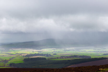 Sunlight and rain falling on Glen of the Downs photo