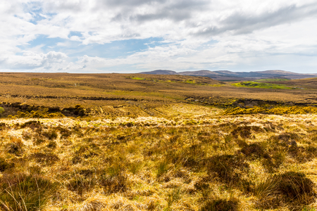 connemara: Heath and bog in Connemara National Park Stock Photo