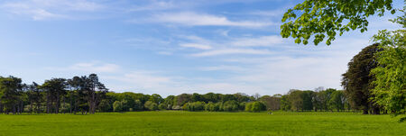 Panorama of Idyllic Phoenix Park in Dublin Ireland photo