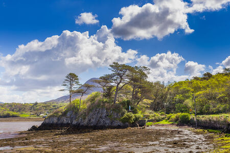 Rocky island with trees in Letterfrack photo