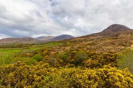 connemara: View towards the mountains in Connemara National Park
