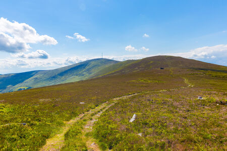 leinster: Track to Mount Leinster Stock Photo