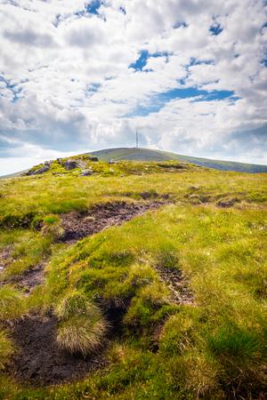 blackrock: Tyical patch of bog on Mt Leinster Stock Photo