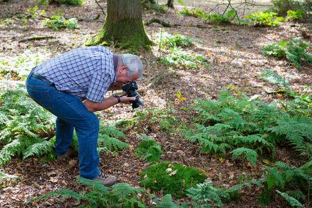 maladroit: Senior homme dans une position de photographier la vie en for�t maladroite Banque d'images