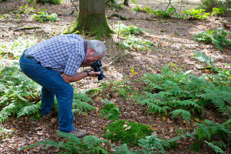 awkward: Senior man in an awkward position photographing forest life