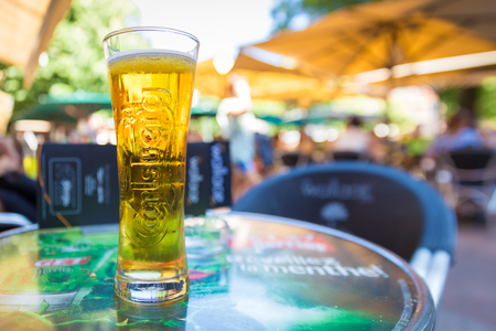 pilsner beer: TOULOUSE, FRANCE - JULY 22, 2014: A pint of Carlsberg served at Le Wallace cafe. Le Wallace is one of Toulouses hot places because of its  perfect location on Place Saint-Georges.