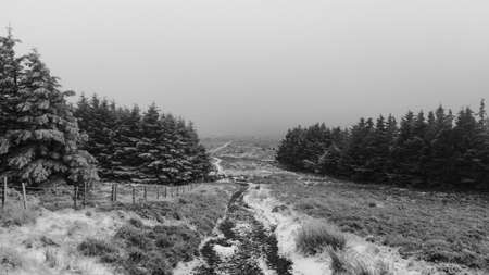 mud and snow: Winter white landscape in Wicklow Mountains in Ireland