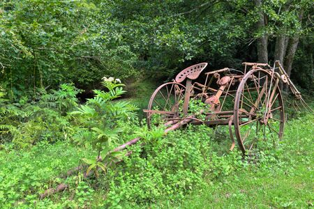 horse drawn: Old rusty overgrown horse drawn hay tedder Stock Photo