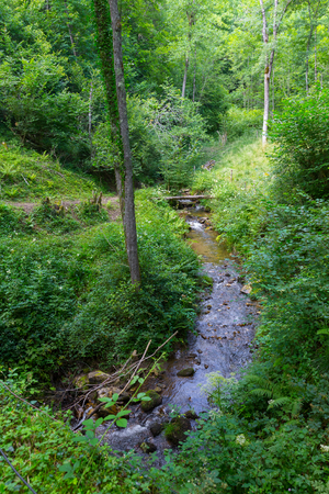 runnel: Small creek running through the pyrenees in Boussenac in France