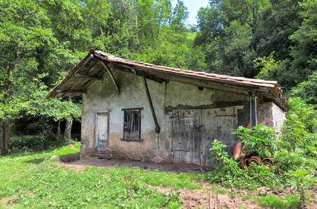 barn door: Little overgrown barn in Riverenert France