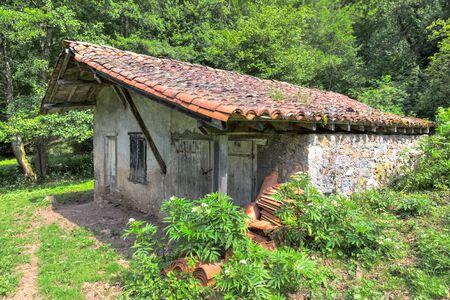 Small overgrown barn in Riverenert France