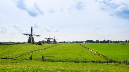 Three seventeenth century windmills in a farm field in Leidschendam in the Netherlands