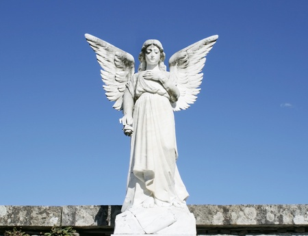 angel roses: Beautiful image of an angel sculpture with a blue sky