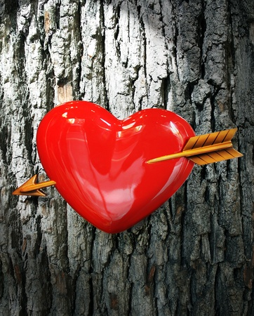 first sight: Heart with arrow with bark as background