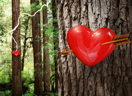 obsession: Hearts on trees in a forest with a bolt of lighting strikes  Stock Photo