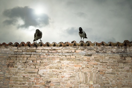 Photo of two crows on top of the roof with a dramatic cloudy sky in the background Stock Photo - 12842699