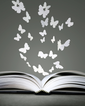 An open book with white butterflies on grey background Stockfoto