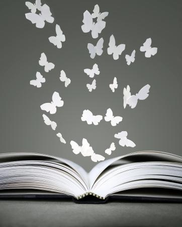 An open book with white butterflies on grey background Standard-Bild