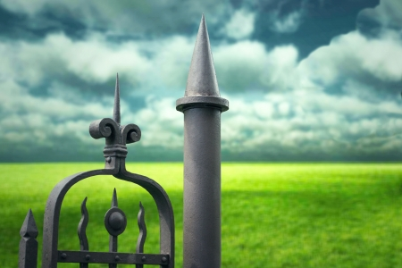 Detail of an unusual gate with lawn and dramatic sky on the background Stock Photo - 13895453