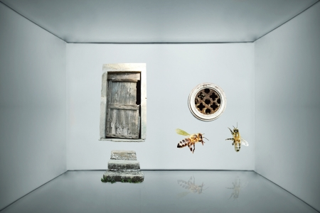 Fantasy background with door, circular window and two bees inside a grey box carton