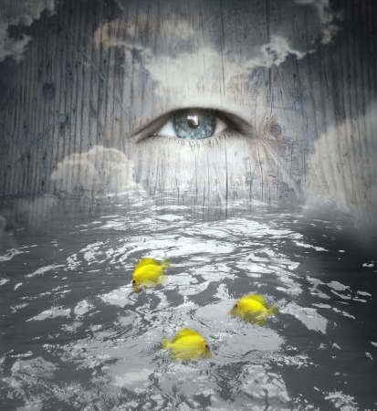 Fantasy of a human eye in the sky and water with fishes below Stock Photo - 15461880