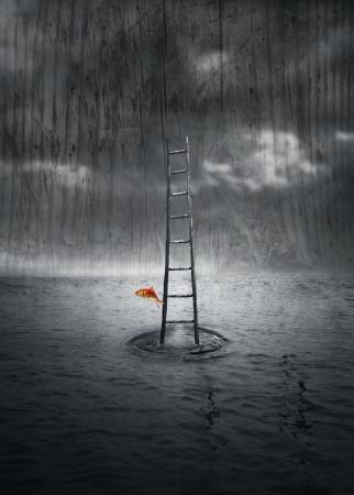 Fantasie achtergrond met een houten ladder uit het water en een gekleurde vis die springen in een dramatische omgeving in zwart en wit