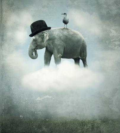 Fantasie surrealistische achtergrond met een olifant met een hoed en een meeuw die vliegen op een wolk in de hemel