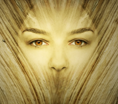 Fantasy background represent a face woman undergoes a transformation in wood in golden color Stock Photo - 16830050