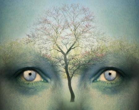 psique: Fondo hermoso de la fantasía artística que representa un dos ojos humanos y un árbol Foto de archivo