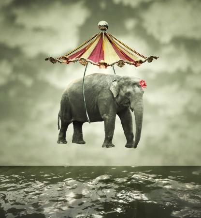 Fanciful en artistieke beeld dat een vliegende olifant met circustent boven het water te vertegenwoordigen Stockfoto
