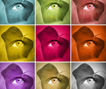 Conceptual stylized of a human eye with an ivy leaf around it featuring series in different colors Stock Photo - 17456189