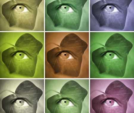 Conceptual stylized of a human eye with an ivy leaf around it featuring series in different colors Stock Photo - 17478340