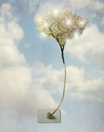 Artistic concept of a plug of light with the wire that becomes a tree Stock Photo