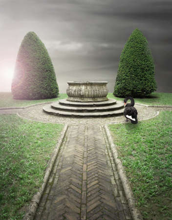 stair well: Beautiful composition outdoor of an antique park with a well and a black swan Stock Photo