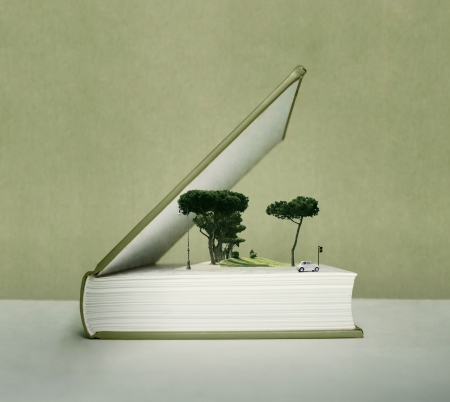 Artistic fantasy open book with the pop up effect with trees, car, field and traffic light Standard-Bild