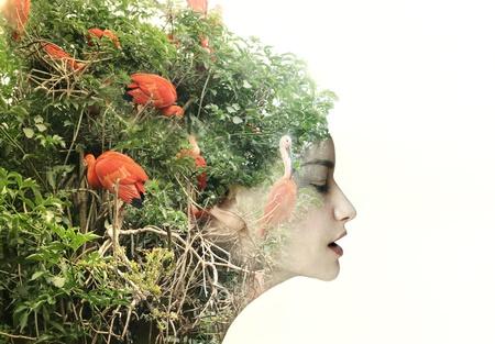 mente: Artistic perfil de mujer surrealista en una metamorfosis con la naturaleza