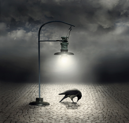 Beautiful artistic image with a streetlight that  illuminates a crow and cobblestones with a dark and cloudy sky on the background Фото со стока