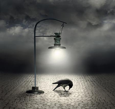 Mooie artistieke afbeelding met een straatlantaarn die een kraai en kasseien met een donkere en bewolkte hemel verlicht op de achtergrond
