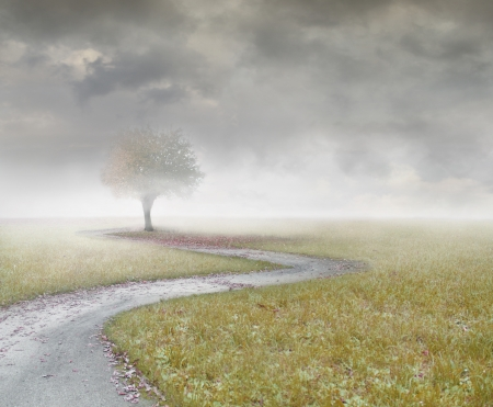 Beautiful landscape with a isolated tree and a path with clouds and fog Stock Photo - 24058270