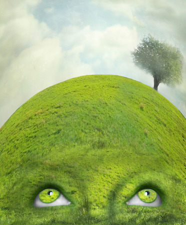 Beautiful artistic imagine representing human eyes and head in one with nature  Stock Photo