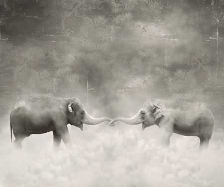 Couple of elephants who keeps with their trunks like a lovers in black and white and a surreal background