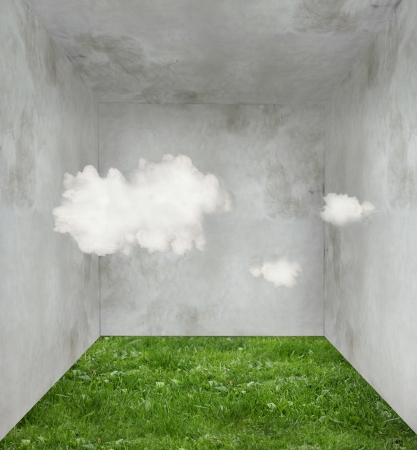psyche: Surreal room with grass on the floor and three clouds inside