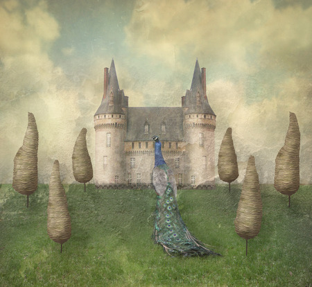 poetical: Fantasy surreal illustration in a dreamy place with a castle, trees, sky, grass with a beautiful peacock male