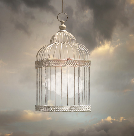 aviary: Dreamy image that represent a cloud inside a cage with a beautiful sky in the background
