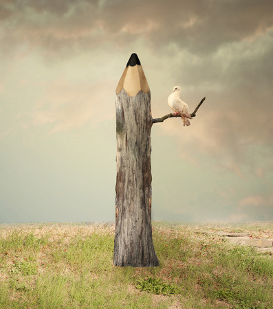 Surreal illustration imagine representing a pencil like a tree with a dove under a branch with a beautiful sky and grass