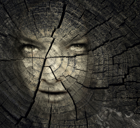 to creep: Female portrait in a trunk crack texture
